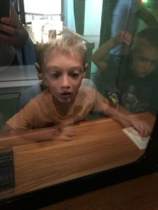 Summer Fun Activities - Children's Museum of Stockton, World of Wonders Science Museum, and Sacramento Children's Museum - just examples of 3 local museums within an hour of each other!