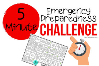 5-Minute Emergency Preparedness Challenge - What an awesome idea! I am so excited to do this for National Emergency Preparedness Month. I love how this girl from PlanForAwesome.com has made these tasks SO EASY because they take less than 5 minutes! Anyone can do this! #beprepared #emergencypreparednessmonth